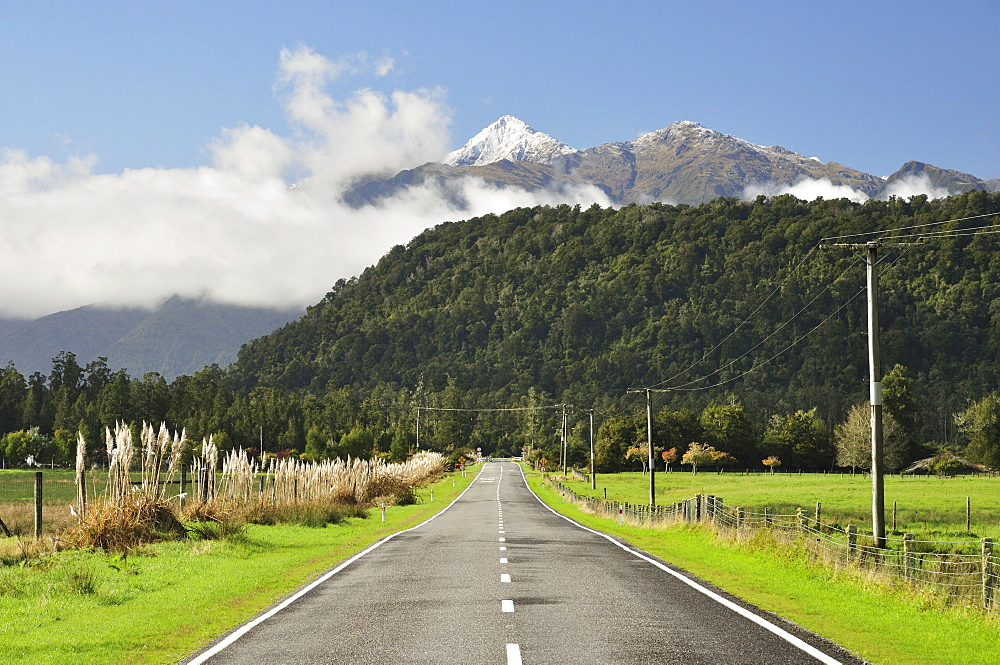 Haast Highway, near Jacobs River, West Coast, South Island, New Zealand, Pacific