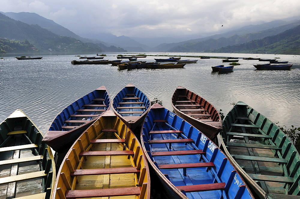 Phewa Tal (Phewa Lake), Pokhara, Gandaki, Western Region (Pashchimanchal), Nepal, Asia - 756-1747