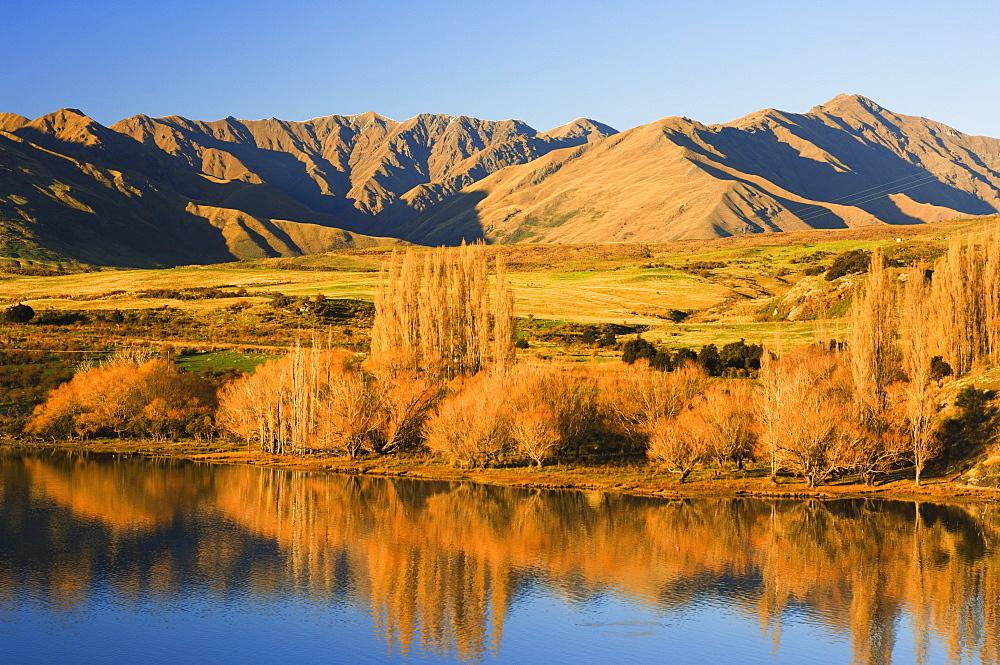 Glendhu Bay, Lake Wanaka, Wanaka, Central Otago, South Island, New Zealand, Pacific