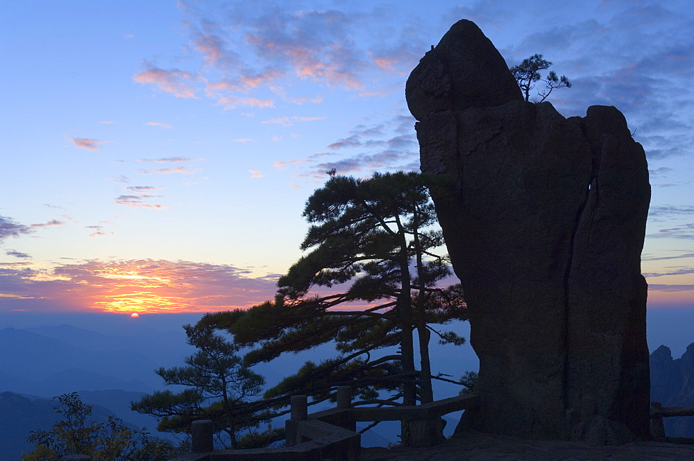 Silhouette of pine tree, White Cloud scenic area, Huang Shan (Mount Huangshan) (Yellow Mountain), UNESCO World Heritage Site, Anhui Province, China, Asia