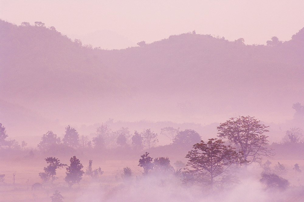 Morning fog over Mrauk U, Myanmar (Burma), Asia - 756-879