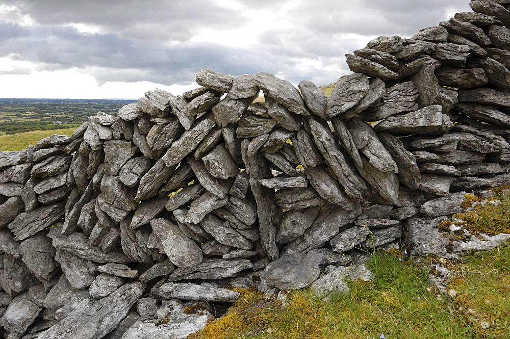 Dry stone wall on The Burren, County Clare, Munster, Republic of Ireland, Europe