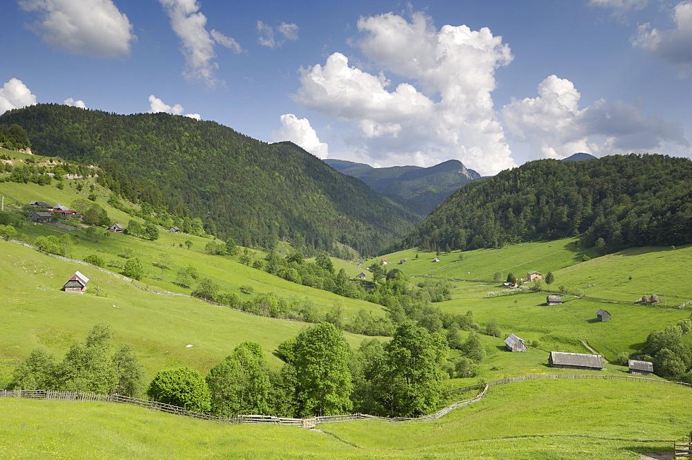 Alpine scenery, near Fundata and Bran, Transylvania, Romania, Europe - 762-393