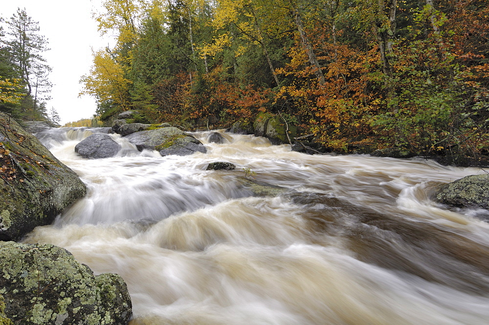Rapids between Mora Lake and Little Saganaga Lake, Boundary Waters Canoe Area Wilderness, Superior National Forest, Minnesota, United States of America, North America