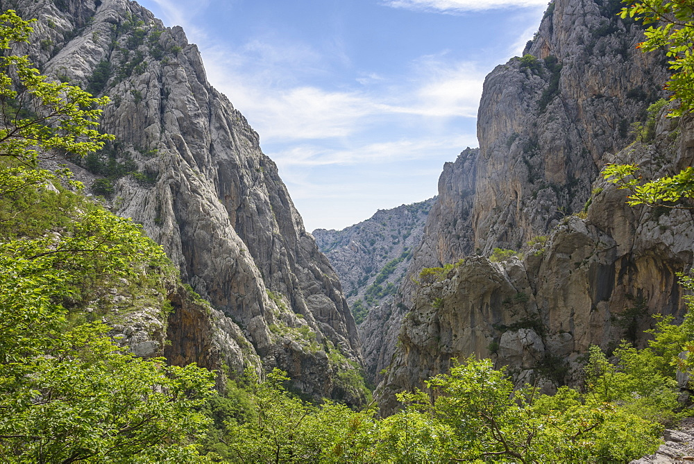 Limestone gorge, Paklenica National Park, Croatia, Europe - 762-804