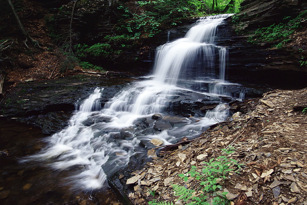 Waterfall, Ricketts Glen State Park, Pennsylvania, United States of America, North America