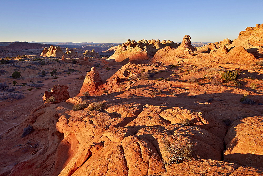 Sandstone formations, Coyote Buttes Wilderness, Vermilion Cliffs National Monument, Arizona, United States of America, North America