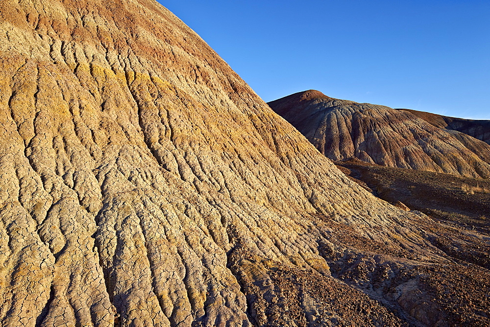 Badlands with yellow, tan, and purple dirt, Vermilion Cliffs National Monument, Arizona, United States of America, North America