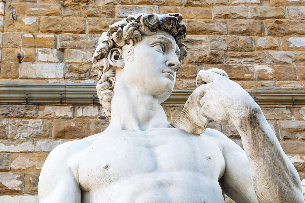 David  by Michelangelo dating from the 16th century, Piazza della Signoria, Florence (Firenze), UNESCO World Heritage Site, Tuscany, Italy, Europe