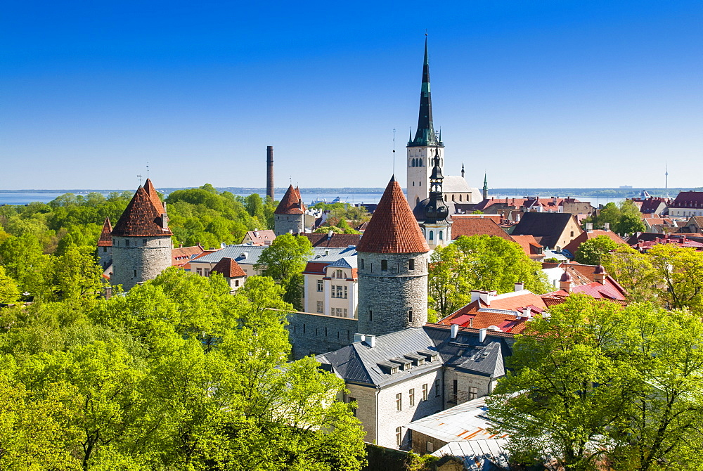 Medieval town walls and spire of St. Olav's church, Toompea hill, UNESCO World Heritage Site, Estonia, Baltic States, Europe - 765-1875