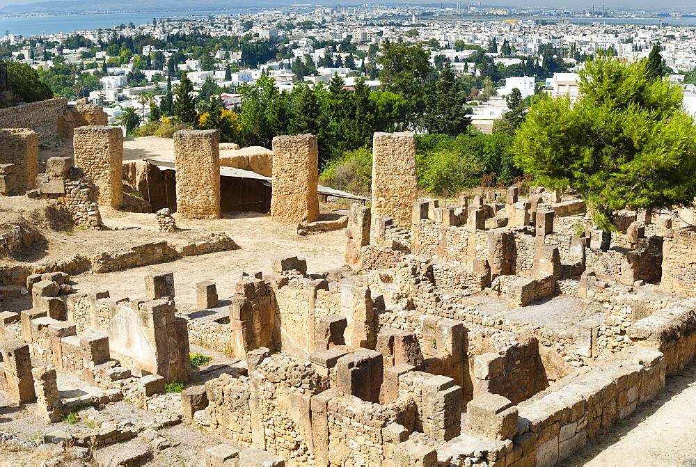 Byrsa Hill, Punic site at Carthage, UNESCO World Heritage Site, Tunis, Tunisia, North Africa, Africa - 765-1901