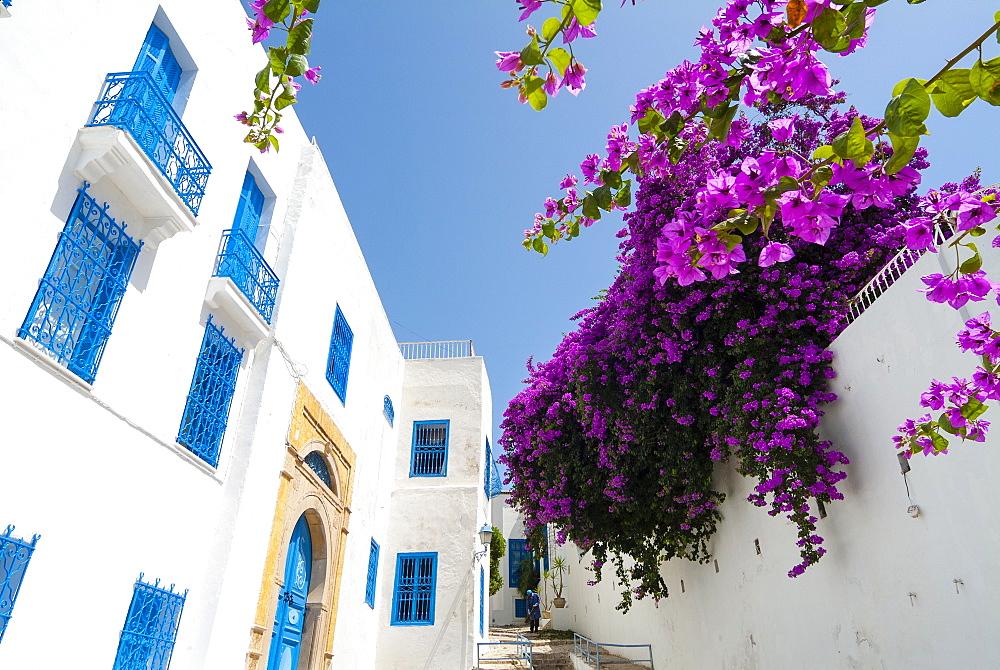 Street, Sidi Bou said, Tunisia, North Africa, Africa