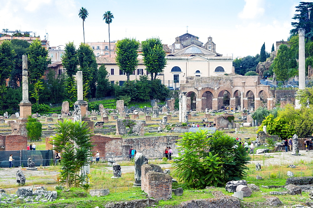 Forum of Nerva, Roman Forum (Foro Romano), UNESCO World Heritage Site, Rome, Lazio, Italy, Europe - 765-1994
