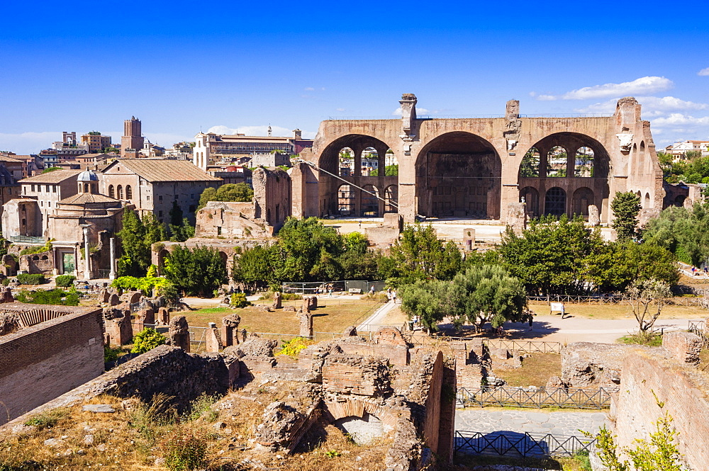 Basilica of Maxentius or Constantine seen from Palatine Hill, UNESCO World Heritage Site, Rome, Lazio, Italy, Europe