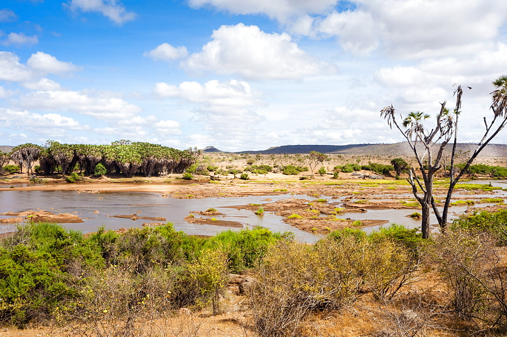 Galana river,Tsavo East National Park, Kenya, East Africa