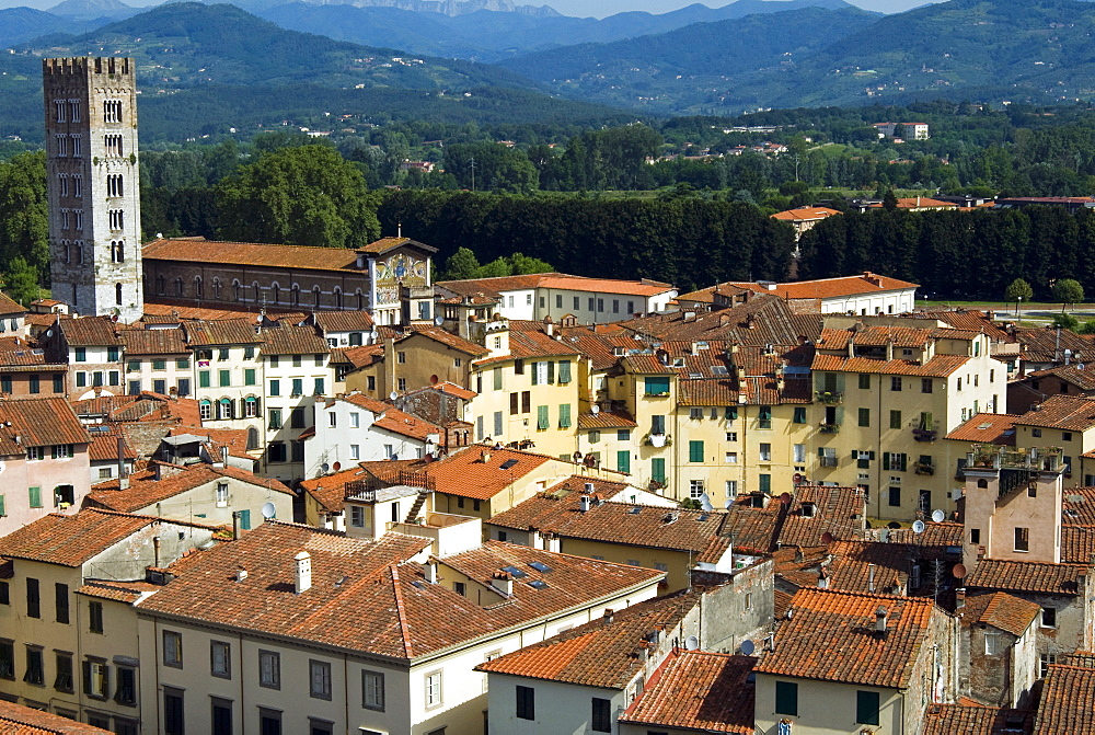 View of Lucca from Torre Guinigi, Lucca, Tuscany, Italy, Europe