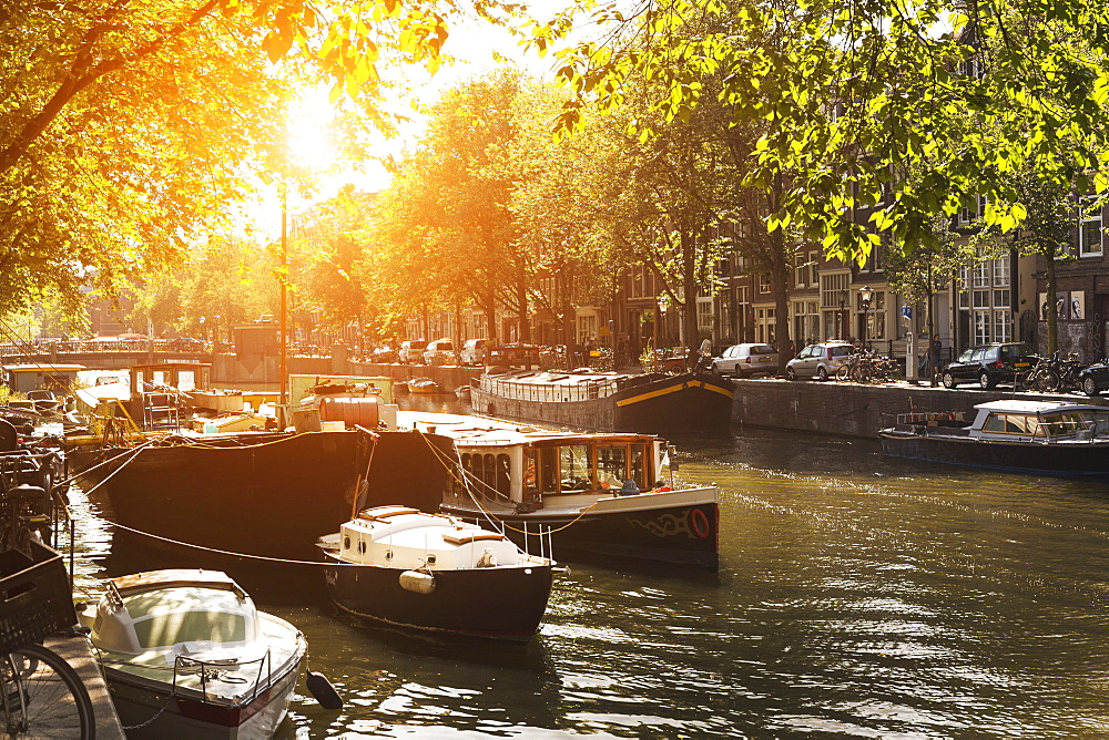 Sunlit canal, Amsterdam, The Netherlands, Europe