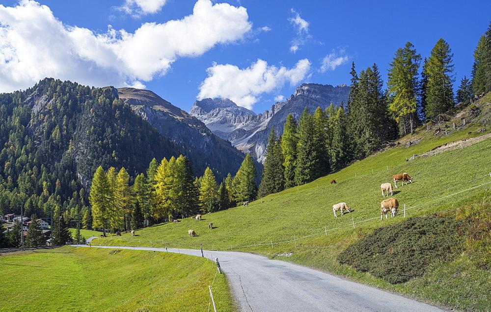 Road to Albula Pass, Graubunden, Swiss Alps, Switzerland, Europe - 772-3668