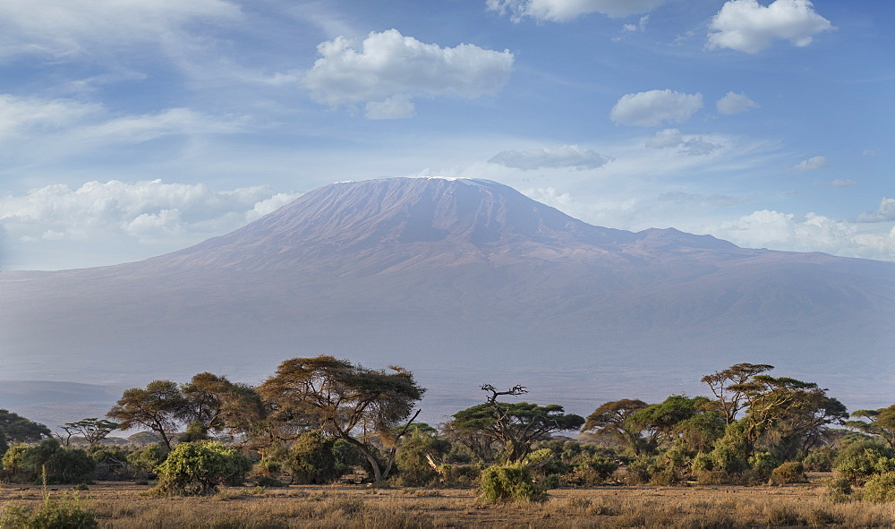Mount Kilimanjaro, UNESCO World Heritage Site, seen from Amboseli National Park, Kenya, East Africa, Africa