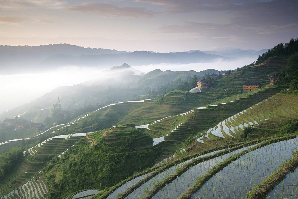 Sunrise, Longsheng terraced ricefields, Guangxi Province, China, Asia