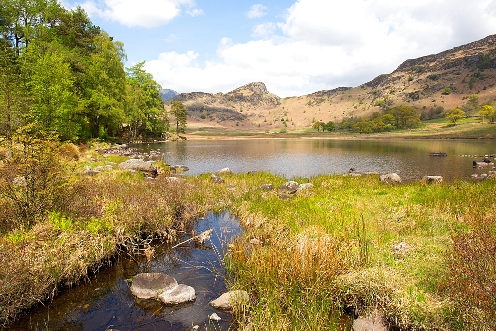 Blea Tarn, Little Langdale, The Lake District, UNESCO World Heritage Site, Cumbria, England, United Kingdom, Europe - 783-127