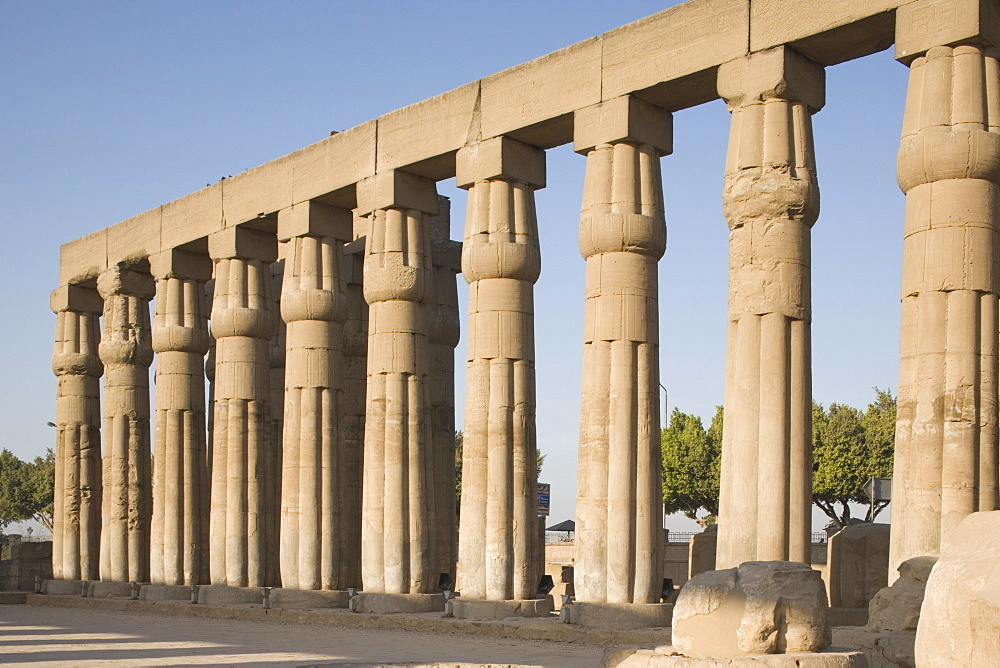 Great Court of Ramesses II, Luxor Temple, Luxor, Thebes, UNESCO World Heritage Site, Egypt, North Africa, Africa - 783-32