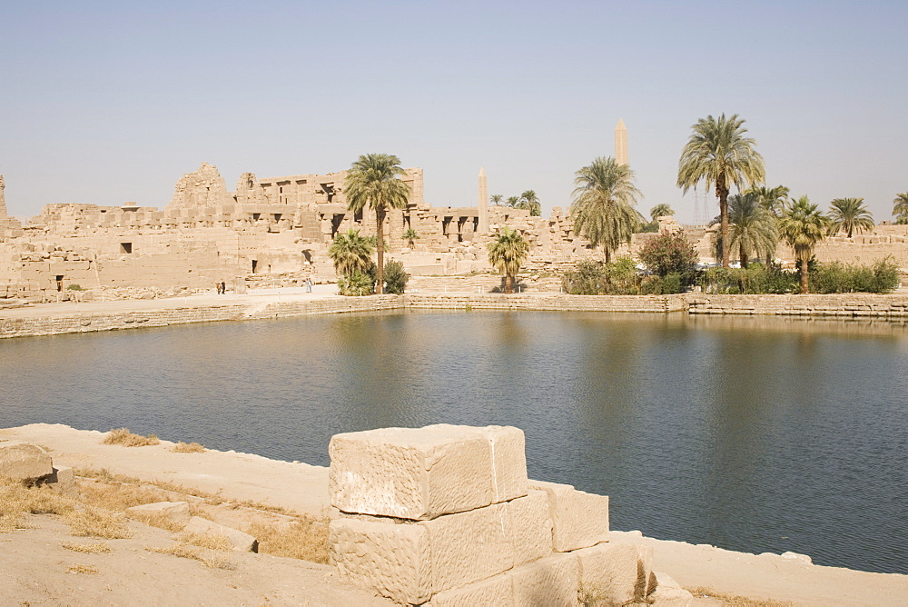Sacred Lake, Temple of Karnak, Karnak, near Luxor, Thebes, UNESCO World Heritage Site, Egypt, North Africa, Africa - 783-36