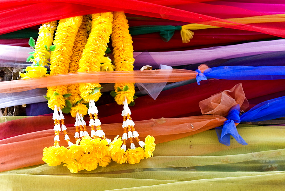 Coloured fabric tied around trees, Chiang Mai, Thailand, Southeast Asia, Asia