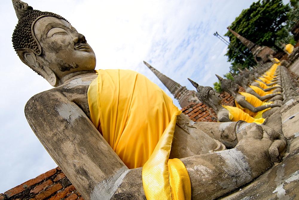 Buddha statues, Ayuthaya, Thailand, Southeast Asia, Asia - 784-237