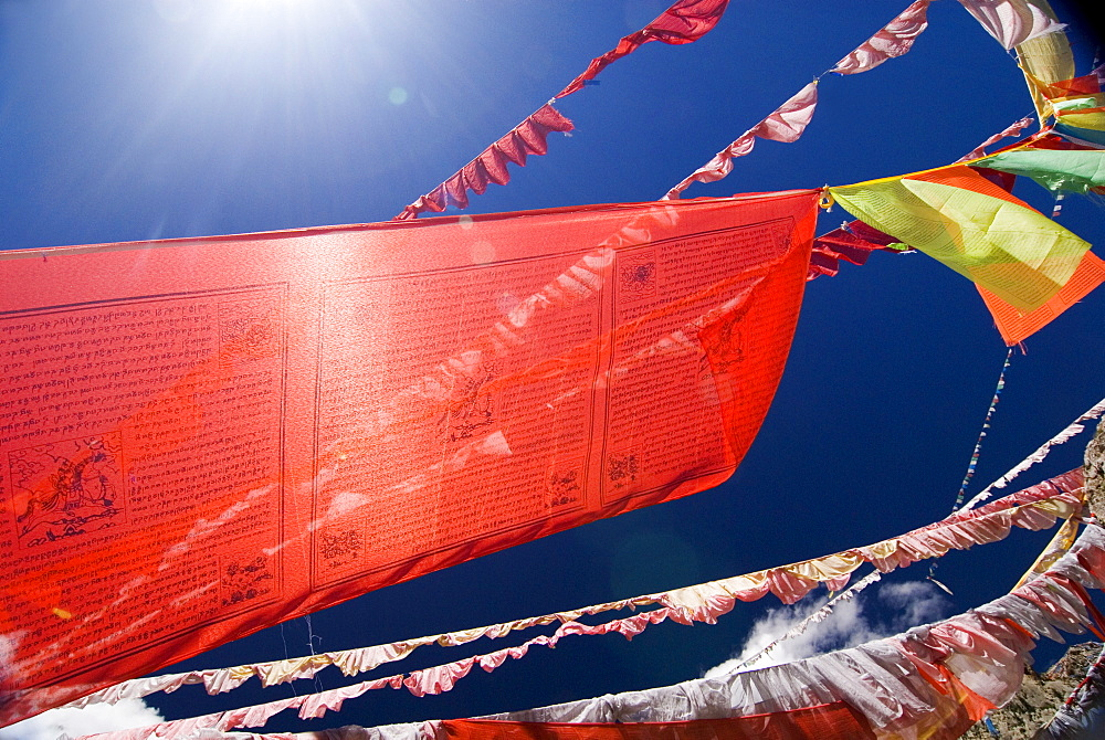 Red prayer flags against blue sky, Yushu, Qinghai, China, Asia - 784-30
