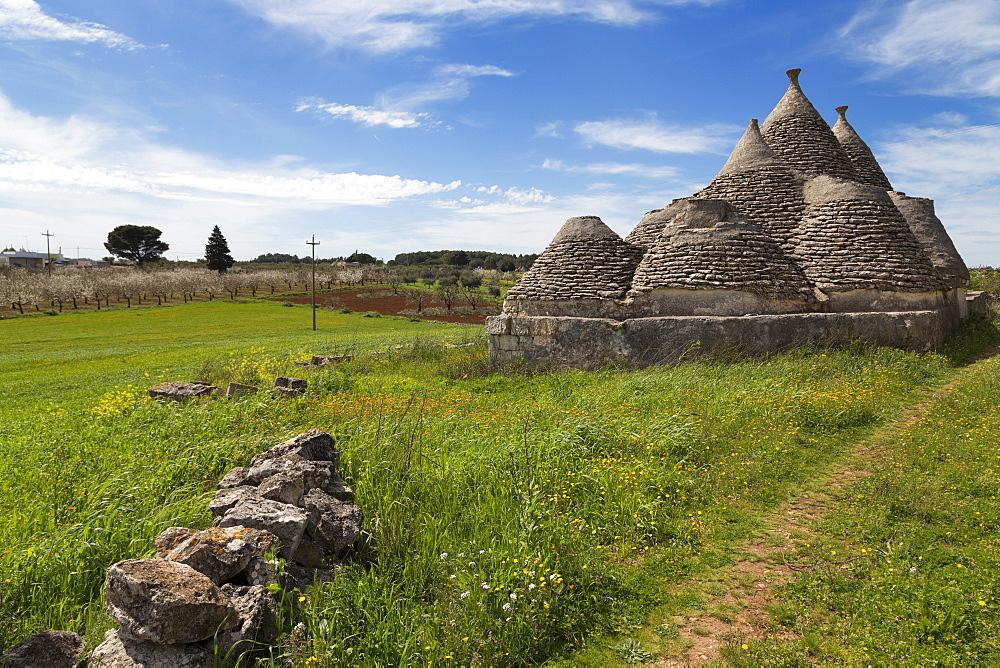 Traditional trullos (trulli) in the countryside near Alberobello, Puglia, Italy, Europe