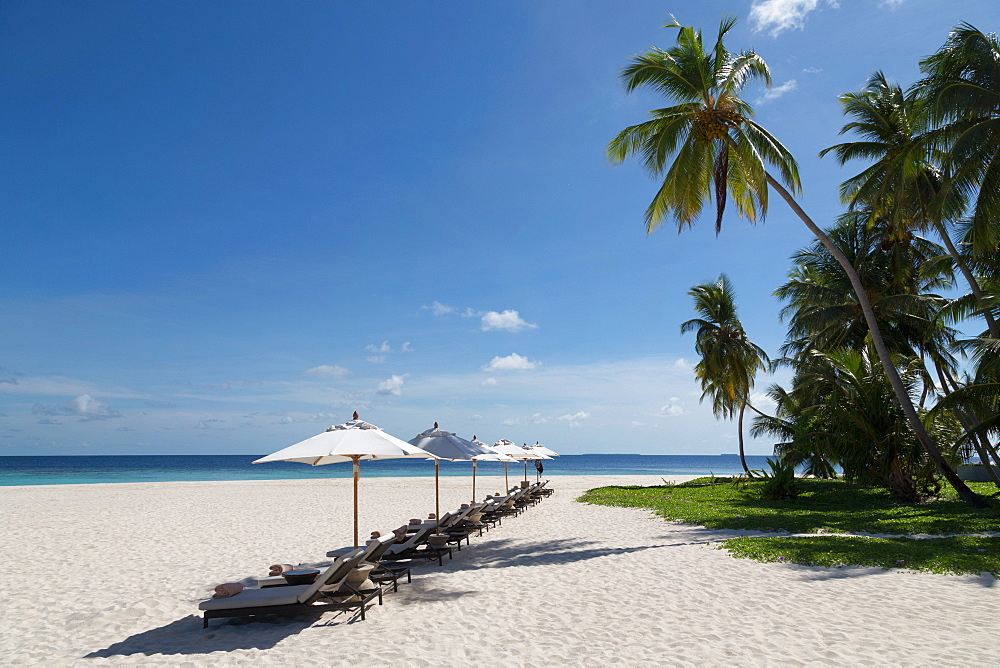 Sun loungers on the beach on an island in the Northern Huvadhu Atoll, Maldives, Indian Ocean, Asia