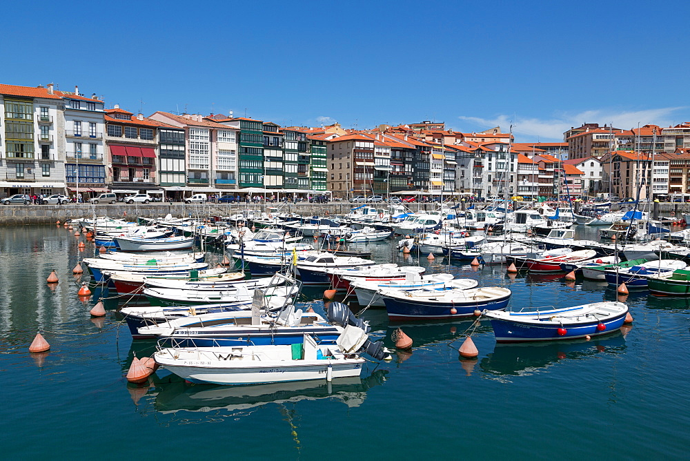 Traditional fishing boats moored in the harbour in Lekeitio, Basque Country (Euskadi), Spain, Europe