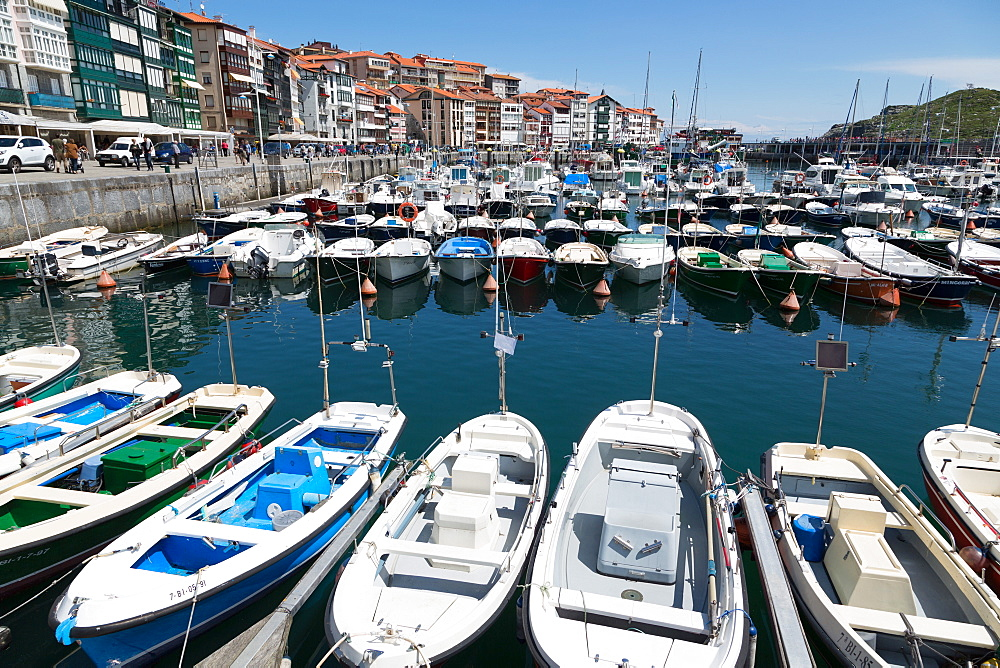 Traditional fishing boats moored in the harbour in Lekeitio, Basque Country (Euskadi), Spain, Europe - 785-2075