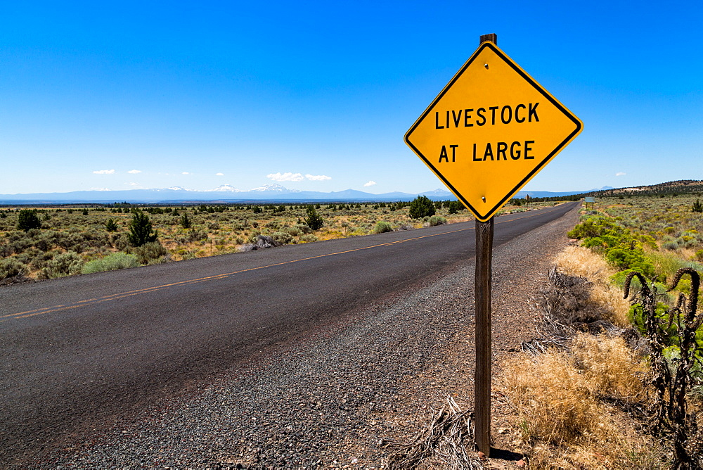Empty road in central Oregon's High Desert with Livestock at Large sign and the Three Sisters peaks in the distance