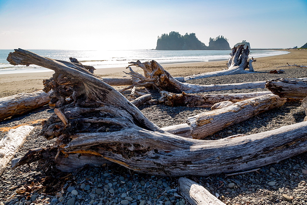 James Island and driftwood on the beach at La Push on the Pacific Northwest, Washington State, United States of America, North America - 785-2155