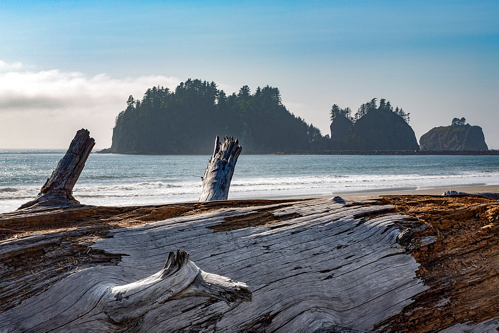 James Island with driftwood on the beach at La Push on the Pacific Northwest coast, Washington State, United States of America, North America - 785-2158