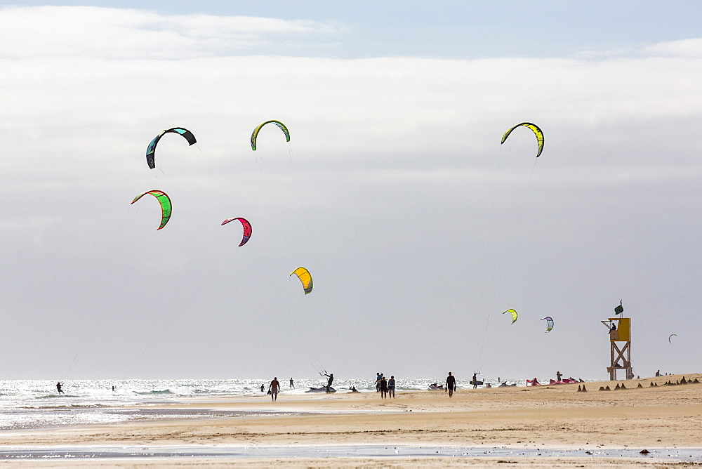 Many people kiteboarding off the Playa de La Barca, Costa Calma, on the volcanic island of Fuerteventura, Canary Islands, Spain, Atlantic, Europe - 785-2255