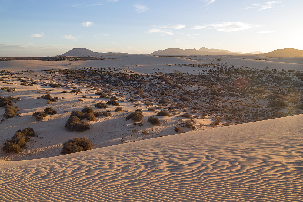 The dramatic Dunas de Corralejo in evening light on the volcanic island of Fuerteventura with mountains beyond, Fuerteventura, Canary Islands, Spain, Atlantic, Europe - 785-2281