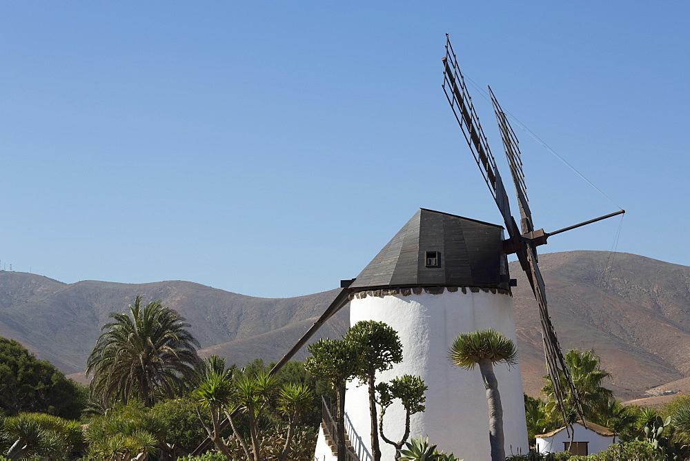 Windmill at the Museo del Queso Majorero near Antigua in Fuerteventura, Canary Islands, Spain, Atlantic, Europe - 785-2300