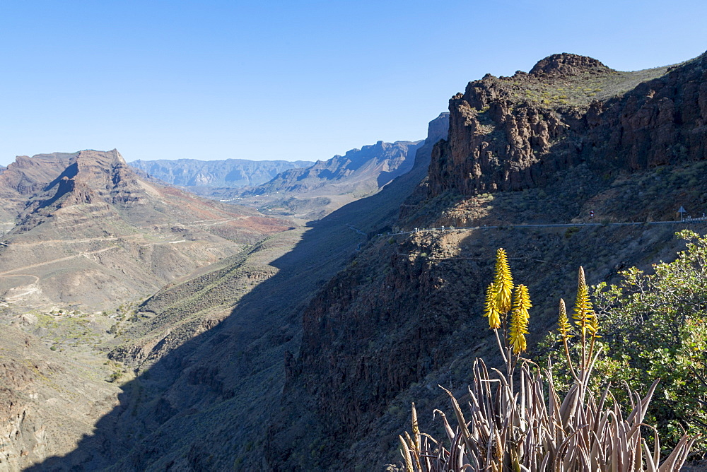 Barranco de Fataga canyon seen from Degollada de La Yegua viewpoint, Gran Canaria, Canary Islands, Spain, Europe - 785-2314