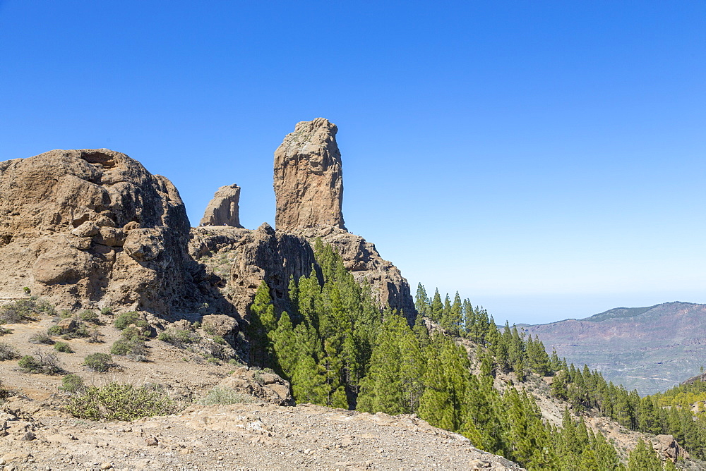 The volcanic Roque Nublo in the Nublo Rural Park in the centre of Gran Canaria, Canary Islands, Spain, Atlantic, Europe - 785-2318