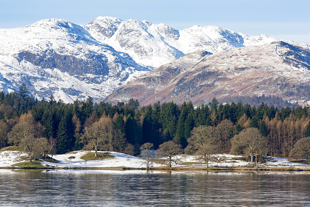 Looking towards the north end of Windermere near Ambleside, with rugged snow covered mountains including Helvellyn, Lake District National Park, UNESCO World Heritage Site, Cumbria, England, United Kingdom, Europe - 785-2327