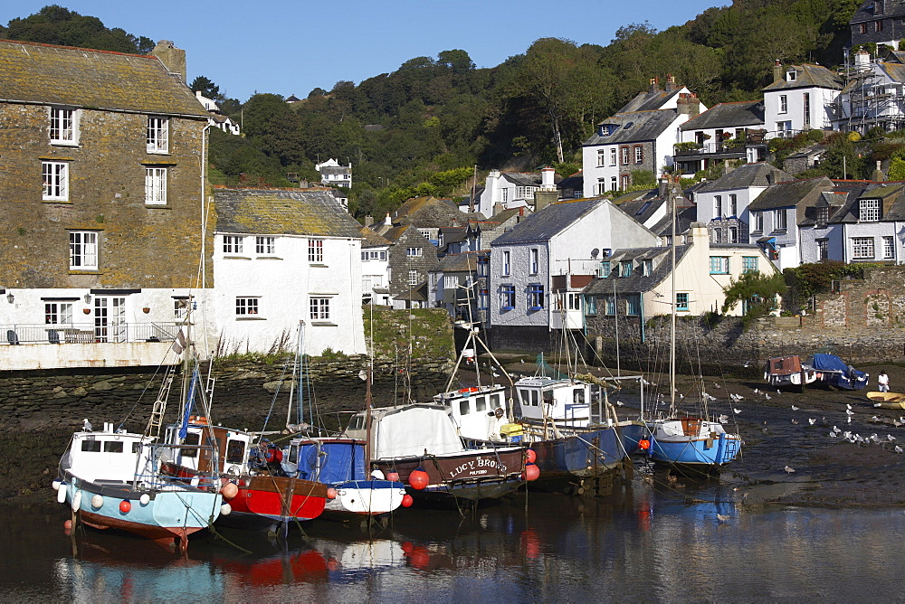 Polperro, Cornwall, England, United Kingdom, Europe - 790-11