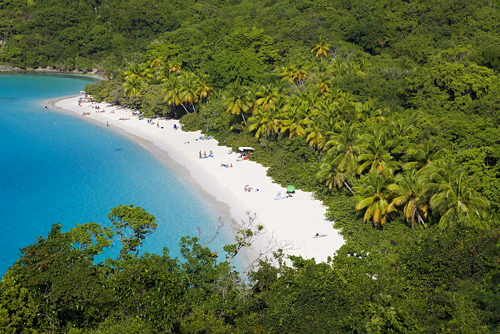 Elevated view over the world famous beach at Trunk Bay, St. John, U.S. Virgin Islands, West Indies, Caribbean, Central America - 794-325