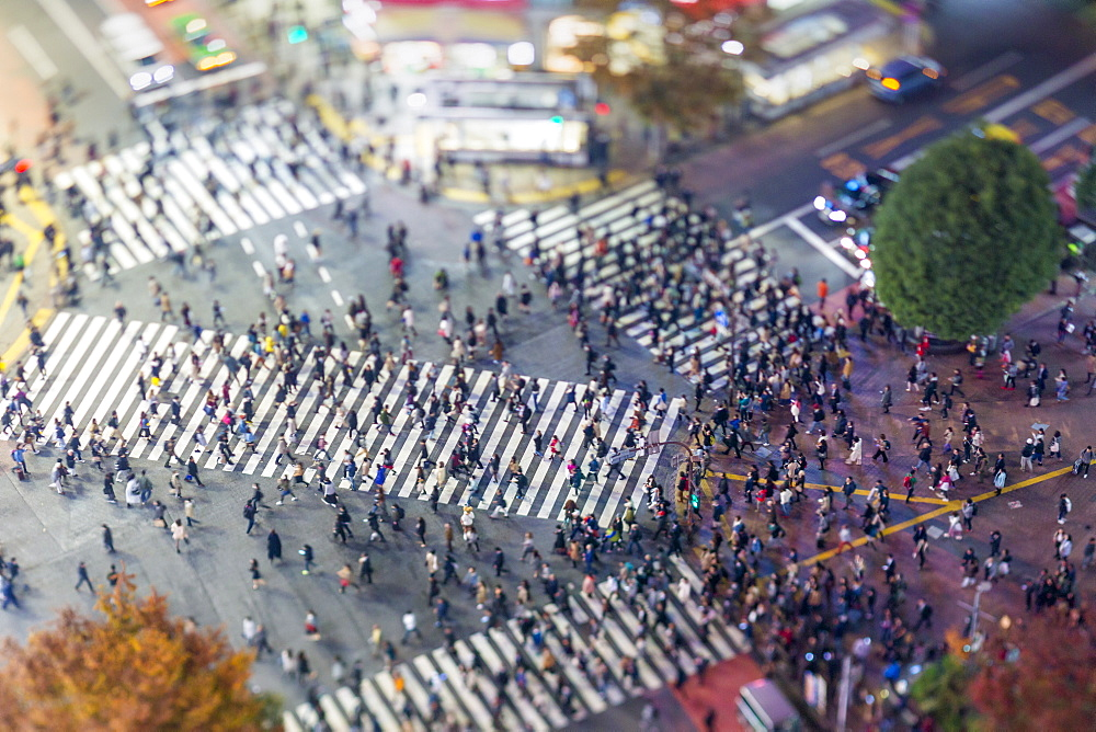 Shibuya Crossing, centre of Shibuya's fashionable shopping and entertainment district, Shibuya, Tokyo, Japan, Asia - 794-4496