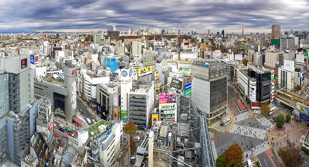 Japan, Tokyo, elevated view over Shibuya Ward towards the Shinjuku skyline - 794-4501