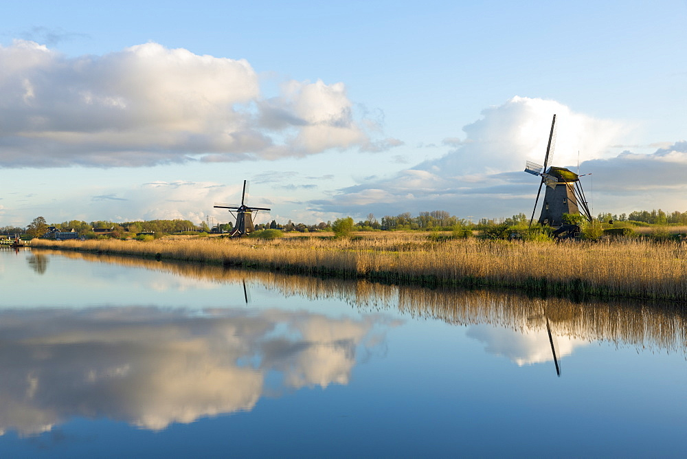 Windmills, Kinderdijk, UNESCO World Heritage Site, Netherlands, Europe