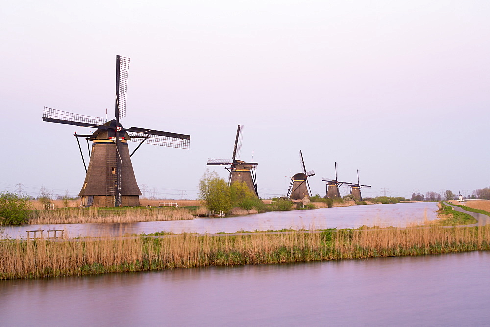 Windmills, Kinderdijk, UNESCO World Heritage Site, Netherlands, Europe - 794-4525