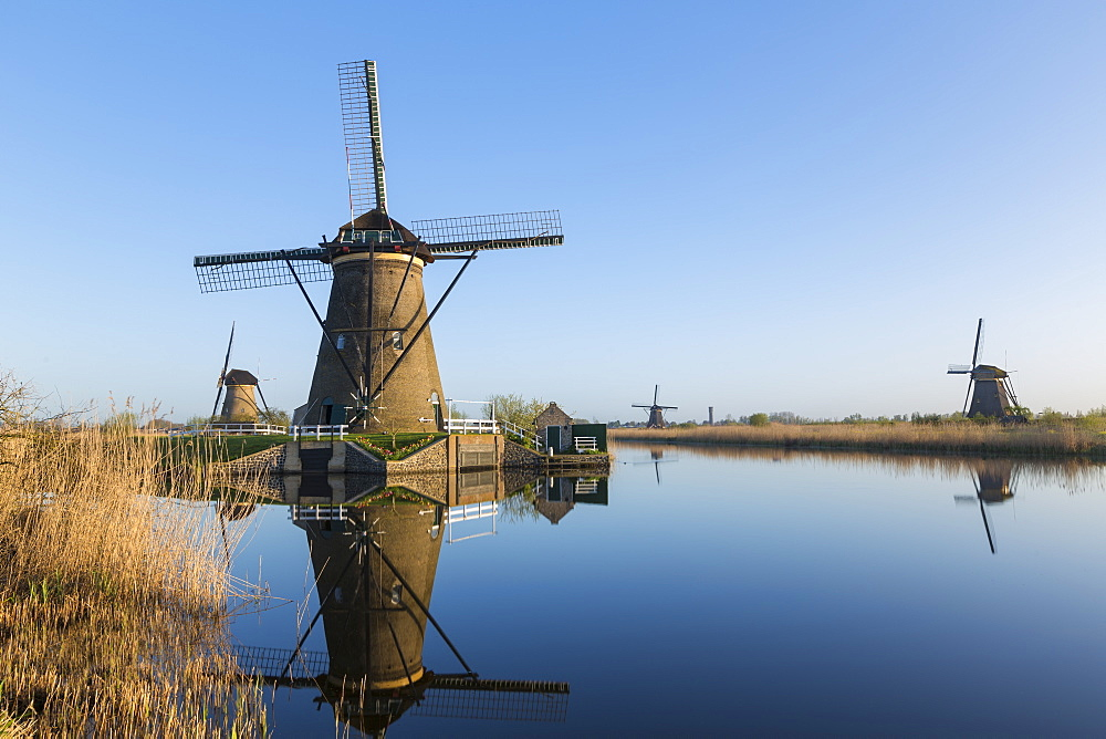 Windmills, Kinderdijk, UNESCO World Heritage Site, Netherlands, Europe - 794-4526